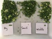 Овощерезка Vega Belt Cutter Mini нарезка зелени, укропа, лука Київ