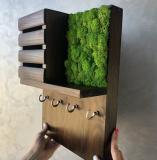 Ключница настенная MiNature Moss брашированое дерево стабилизированый мох эко -декор Рівне