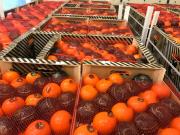 Продаем мандарины Київ
