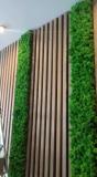 Стена из стабилизированого мха Ягель вертикальное озеленение мхом и растениями MiNature Moss Рівне
